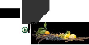 Selección de 9 de los mejores ingredientes botánicos exóticos