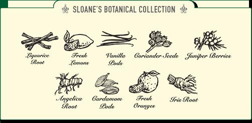 Sloane's botanische collectie