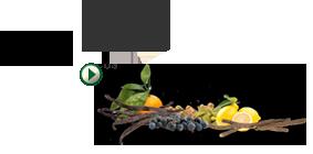 Selectie van 9 botanische ingrediënten